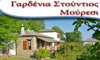 ΓΑΡΔΕΝΙΑ ΣΤΟΥΝΤΙΟΣ  -  ΜΟΥΡΕΣΙ